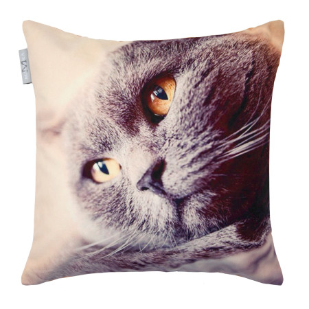 Pillow cover Barnie 2 grey